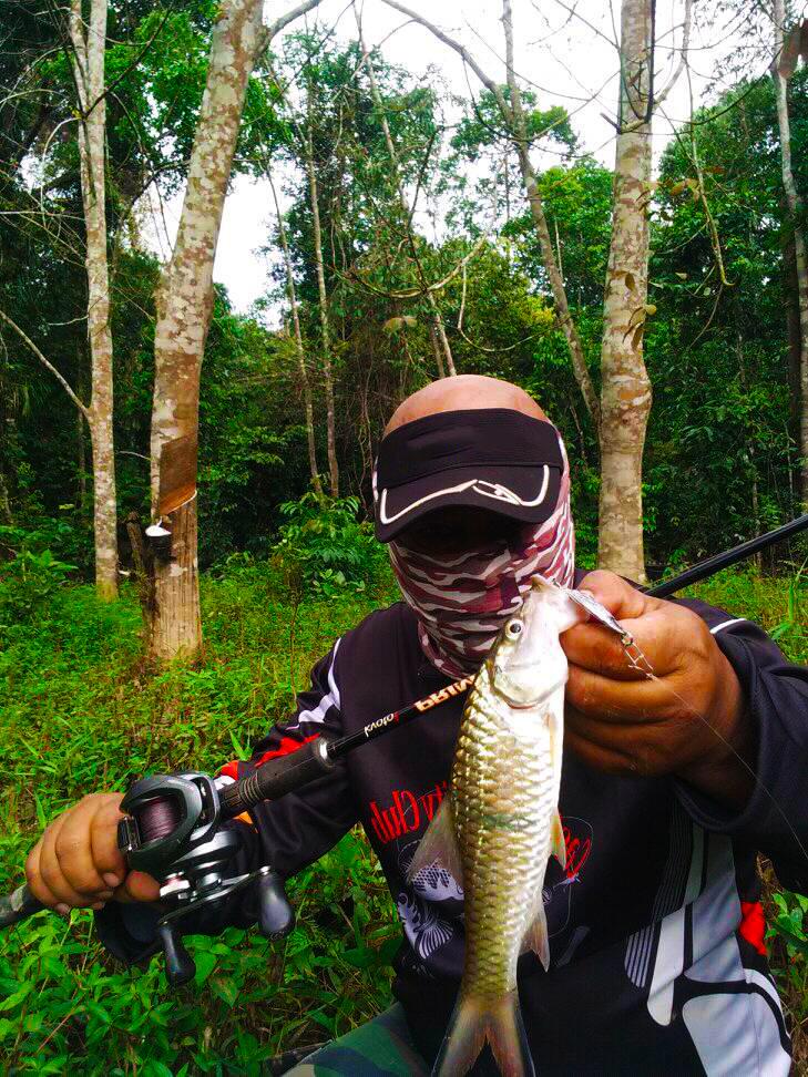 lyee caster menggunakan micro spoon kanicen nix grenti strike red eye memburu serigala sungai
