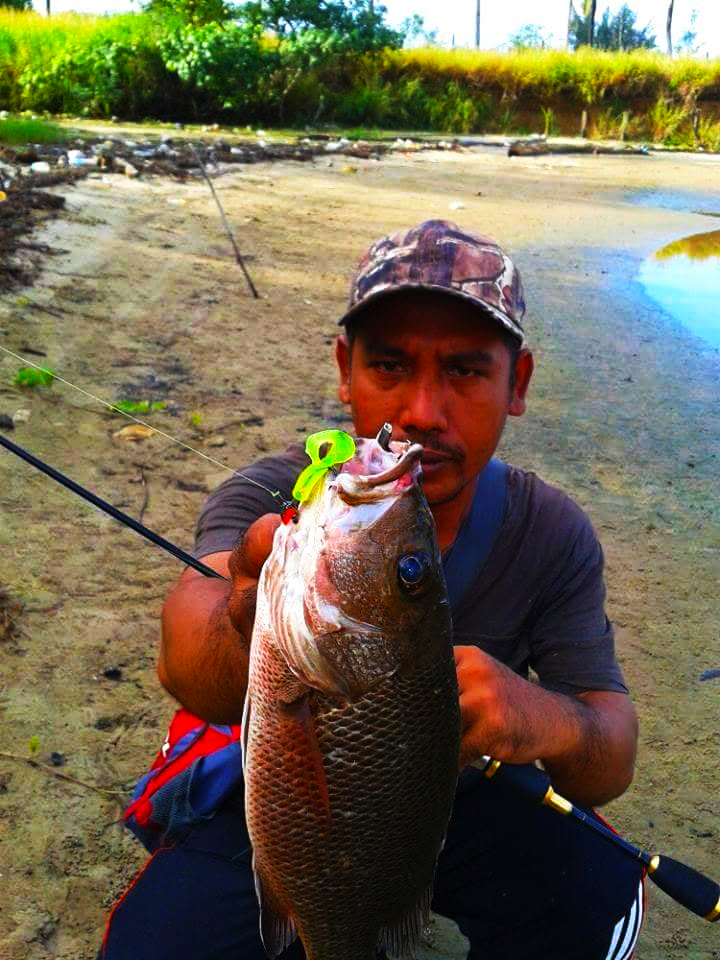 zamisma strike using soft bait kanicen nix curly tail MJ Mangrove Jack Siakap Merah