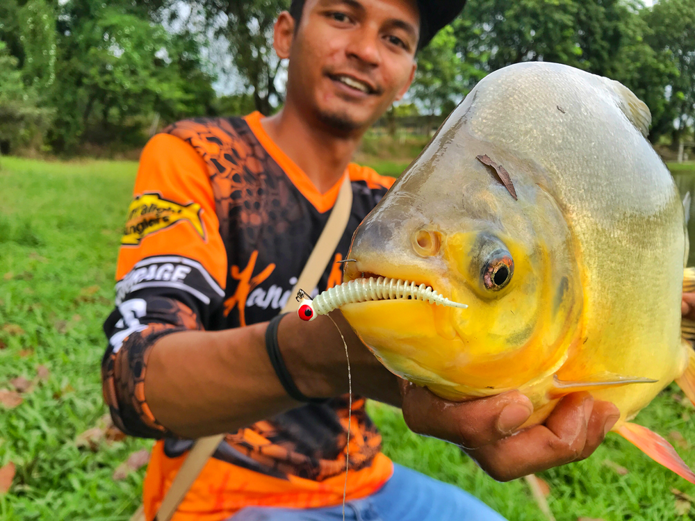 kanicen-nix-grenti-strike-softbait-on-geli-geli-ikan-pacu-by-wawan