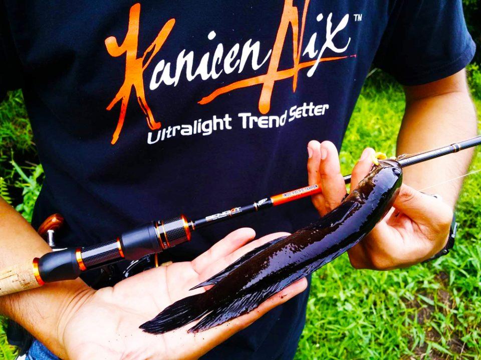 kanicen nix grenti strike candy paddle tail