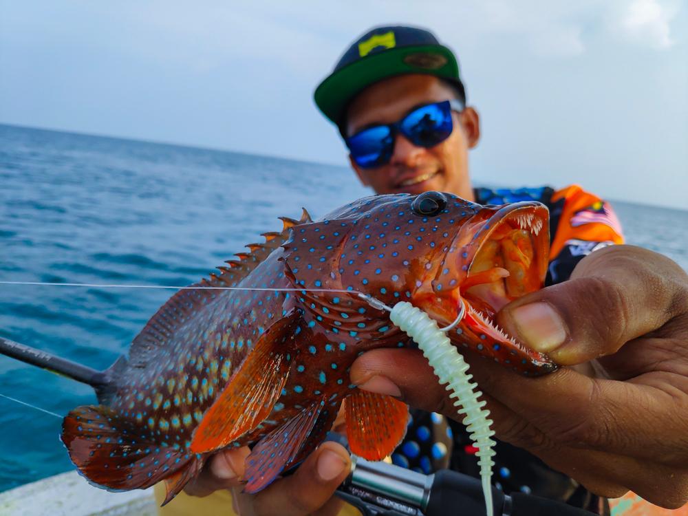 kanicen-nix-grenti-strike-softbait-on-geli-geli-ikan-kerapu-grouper-by-wawan