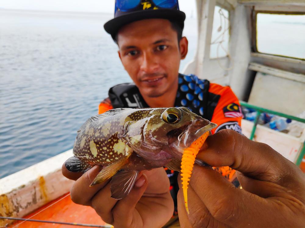 kanicen-nix-grenti-strike-softbait-on-geli-geli-ikan-kerapu-grouper-ikan-karang-by-wawan